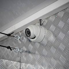 Koniowóz MAN TGL szary monitoring